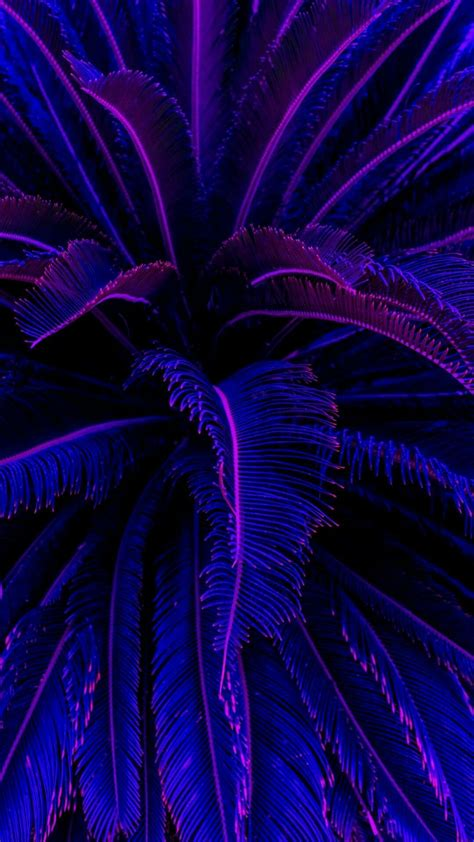 Aesthetically Iphone Xr Wallpaper by Royal Purple Aesthetic Wallpapers Top Free Royal Purple