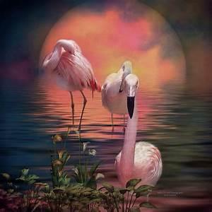 Where The Wild Flamingo Grow Mixed Media by Carol Cavalaris