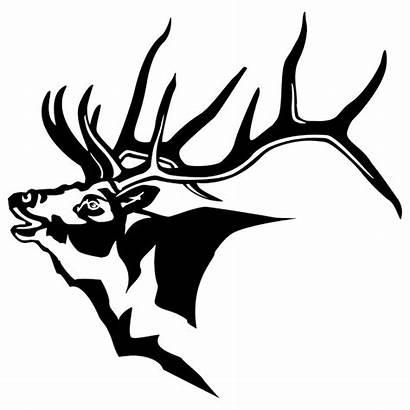 Elk Head Drawing Clipart Moose Decals Silhouette