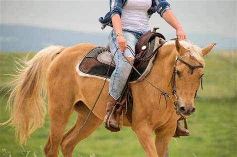 woman dies   dragged  horse  west central