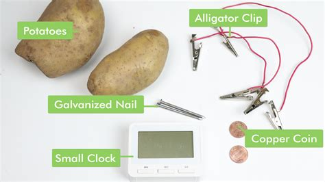 Potato Battery Light Bulb Project Decoratingspecialcom