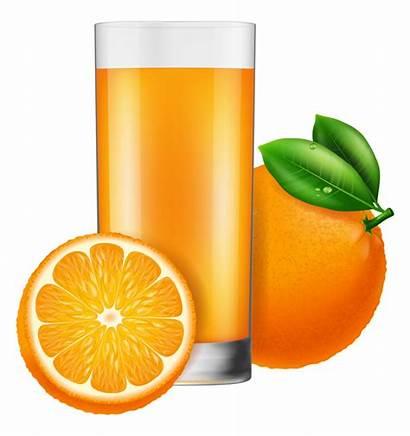 Juice Orange Cup Glass Vectors Vector Eps