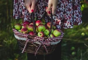 Abnehmen Mit Smoothies Erfahrungen : abnehmen mit detox smoothies detox smoothie kur zum abnehmen ~ Frokenaadalensverden.com Haus und Dekorationen