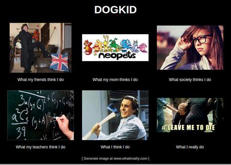 What I Really Do Meme Generator - user blog snickersdoge meme pixie s secret agency psa wiki fandom powered by wikia