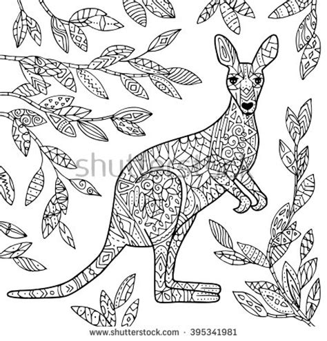 wallaby coloring  wallaby coloring