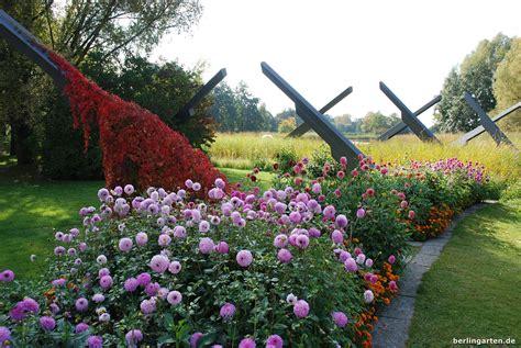 Britzer Garten Wasser by Lohnt Sich Das Dahlienfeuer Im Britzer Garten Berlingarten