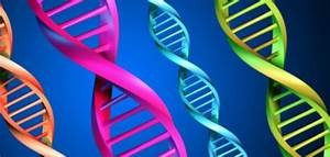 Cancer Genetic Counseling And Testing
