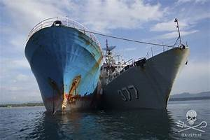 Sea Shepherd UK - Victory Against Illegal Fishing in ...