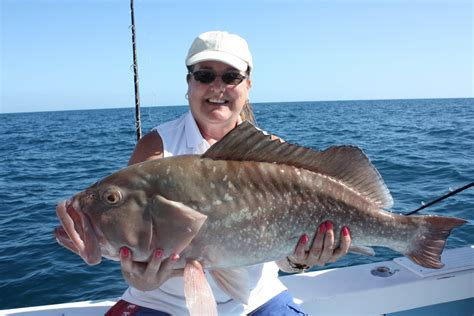fish grouper much pinfish thanksgiving she trophy caught charters offshore maria anna ft island