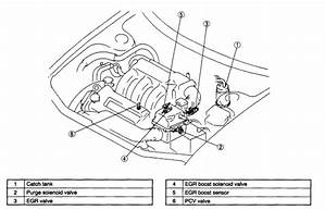 2001 Mazda Tribute Engine Diagram Egr Valve 24774 Getacd Es
