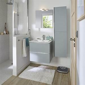 Meuble Salle Bain Castorama : meuble miroir salle de bain castorama ~ Melissatoandfro.com Idées de Décoration