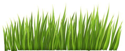 Grass Clipart Grass Cliparts