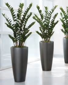 orchid arrangements 4 39 zz silk plant for distinctive home and office decor at
