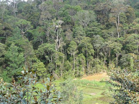 Botanischer Garten Bern Adresse by Madagaskar Insel Der Vielfalt 5 November 2017 Verein