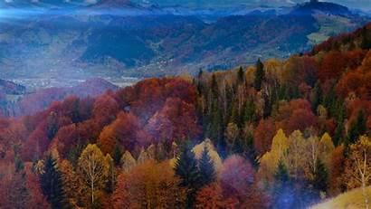 Mountain Orange Fall Flare Tree Nature Fun