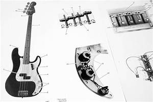 Fender Squier Precision Bass  269500   1984  Parts List