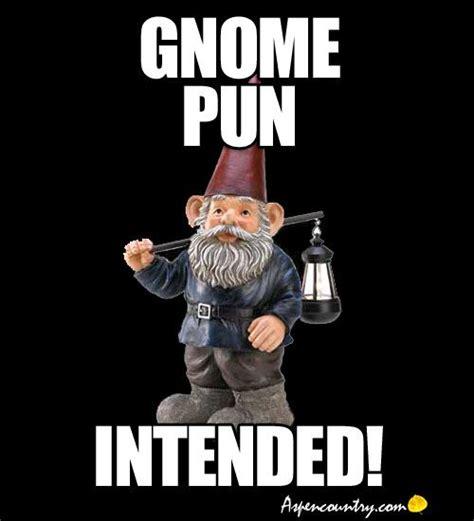 Gnome Meme - funny gnome meme quot gnome pun intended quot https www jollylane com greenhouse greenthumb humor
