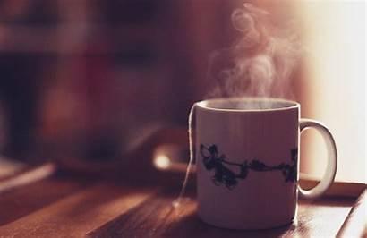 Tea Suck Coffee Gift Ajiri Guide Source