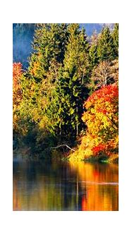 Best HD Widescreen Wallpapers | PixelsTalk.Net