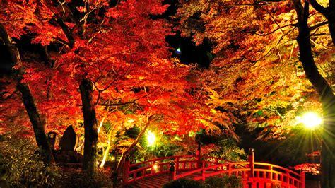 japan ai a adventures in japan atami baien momiji matsuri autumn leaves festival