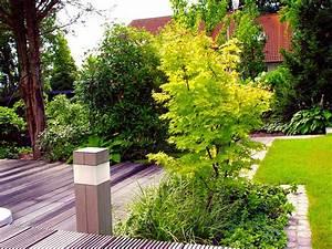 Bäume Für Kübel : 7 tipps f r kleine b ume ~ Michelbontemps.com Haus und Dekorationen