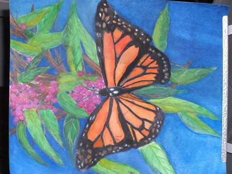 monarch butterfly watercolor pencil painting  piece