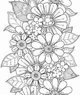 Coloring Flowers Pillars Relaxing Blooming Mintz Rachel Books sketch template