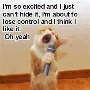 I'm so Excited! | Funny | Pinterest