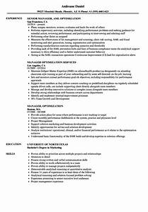 manager optimization resume samples velvet jobs With resume optimization service