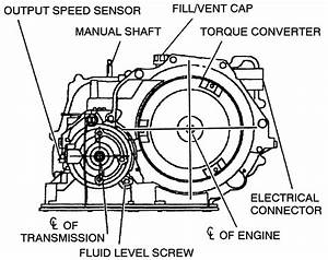Wiring Diagram For 2003 Malibu Transmission