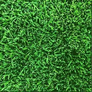 Grass Texture  Vector Illustration