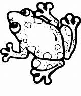 Frog Coloring Theme Tree Clipartmag sketch template