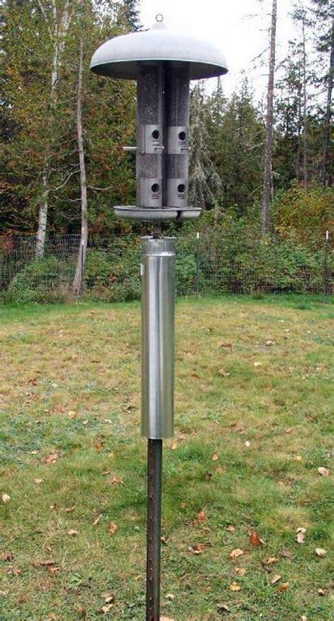 bird feeder pole baffle birdcage design ideas