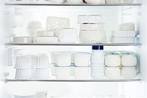 maintain  refrigerator
