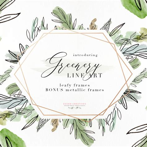 watercolor greenery line png clipart tropical rustic