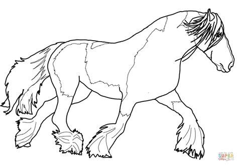 ausmalbild tinker pferd ausmalbilder kostenlos zum
