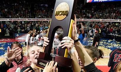 Ncaa Championships Volleyball Championship Division Field Divisions
