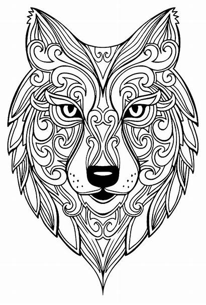 Wolf Coloring Animals Zentangle Mandalas Head Pages