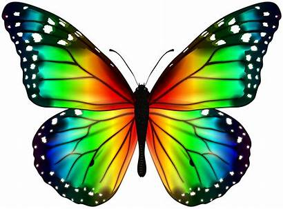 Butterfly Colorful Clipart Butterflies Transparent Yopriceville Var