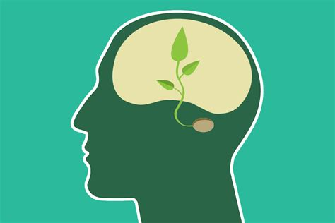 """Cool Classes """"environmental Psychology And Conservation""""  The Haverblog"""