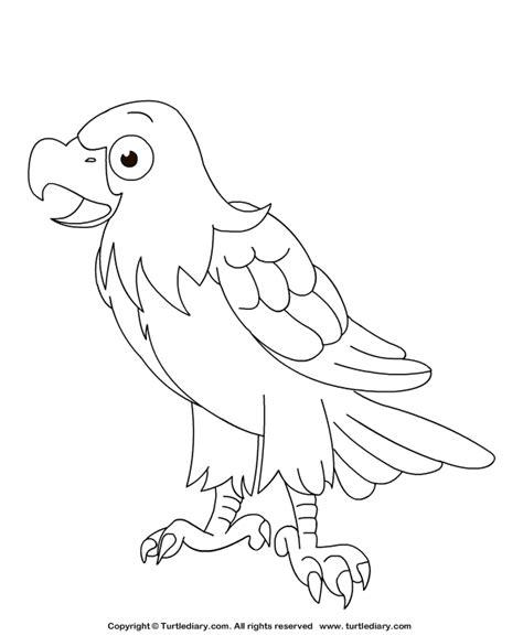 eagle coloring sheet turtle diary