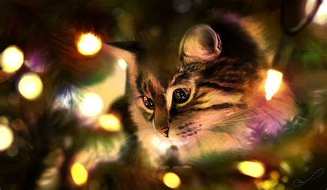 christmas lights by martith on deviantart