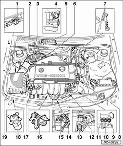 7 Best Images Of Passat 1 8t Engine Diagram