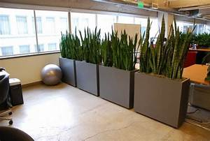 Office, Partitions, For, A, Functional, And, Modern, Workspace