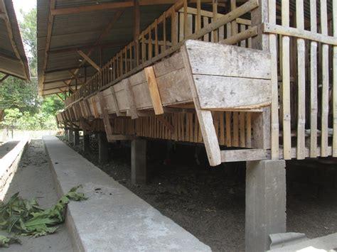 Kandang kambing dibina bertujuan asal untuk menyediakan kediaman yang selesa didiami oleh ternakan. Budidaya Kambing, Bagian II : Pembuatan kandang Kambing ...