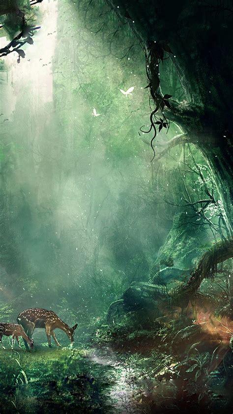 fantasy forest ultra hd  wallpaper  desktop