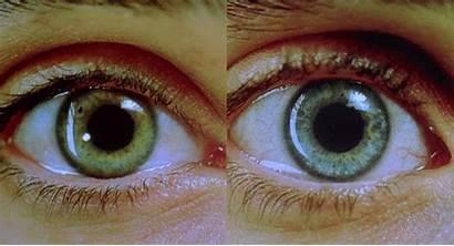 Pupil Nerve Eyes Oculomotor Requiem Dream 2000