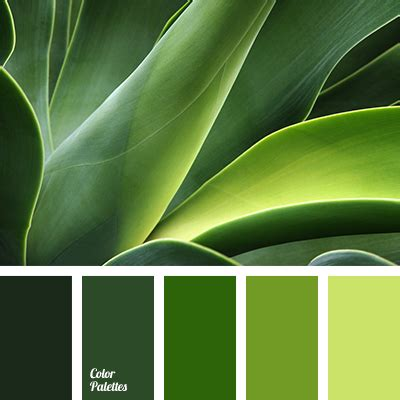 Forest Green  Color Palette Ideas