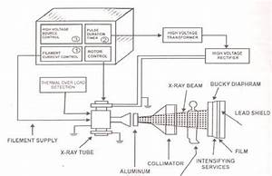 Block Diagram  Circuit Diagram And X Rays On Pinterest