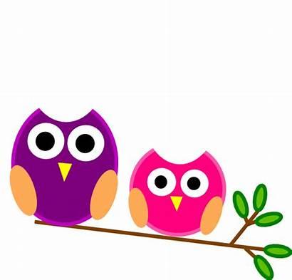 Clipart Clip Owls Cliparts Pink Purple Clker